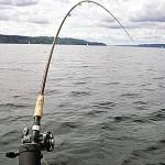 Прылады для рыбнай лоўлі будуць забіраць