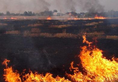 В Малоритском районе произошёл 21 пожар