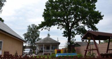 Станет ли Владимирская усадьба в Малоритском районе лучшей на Брестчине?