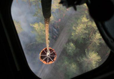 В Беларуси только за последние сутки ликвидировано более 50 лесных пожаров (видео)