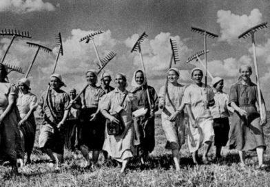 Путь становления СПК «Доропеевичи»: после войны — убийство администрации и пособники нацистов в руководстве