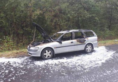 У жительницы Малориты сгорел автомобиль