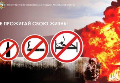 Сотрудники МЧС с 12 ноября проводят акцию «Не прожигай свою жизнь» (Малоритский район)