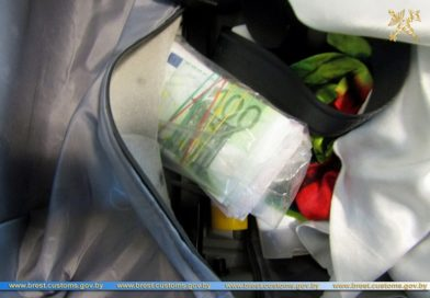 В Бресте таможенники выявили крупную сумму незадекларированной валюты (фото, видео)