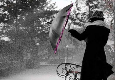 В Малорите на неделе дожди, а в понедельник ещё и сильный ветер с порывами до 17 метров в секунду