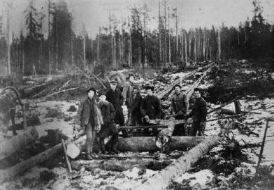 «Наша история» Лесозаготовки, крестьяне деревни Лазки о соли и День леса в 1946 году (Малоритский район)