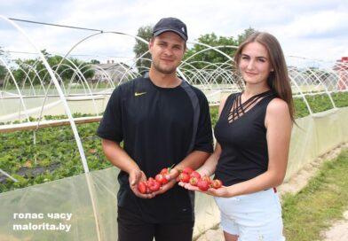 Клубничное дело Алексея и Анастасии Андрейчуков (Малоритский район)