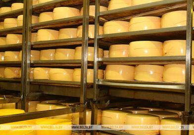 Более 40% экспорта белорусской сельхозпродукции — молочка
